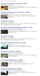 Youtube Videoes zum Keyword Wildsauseo